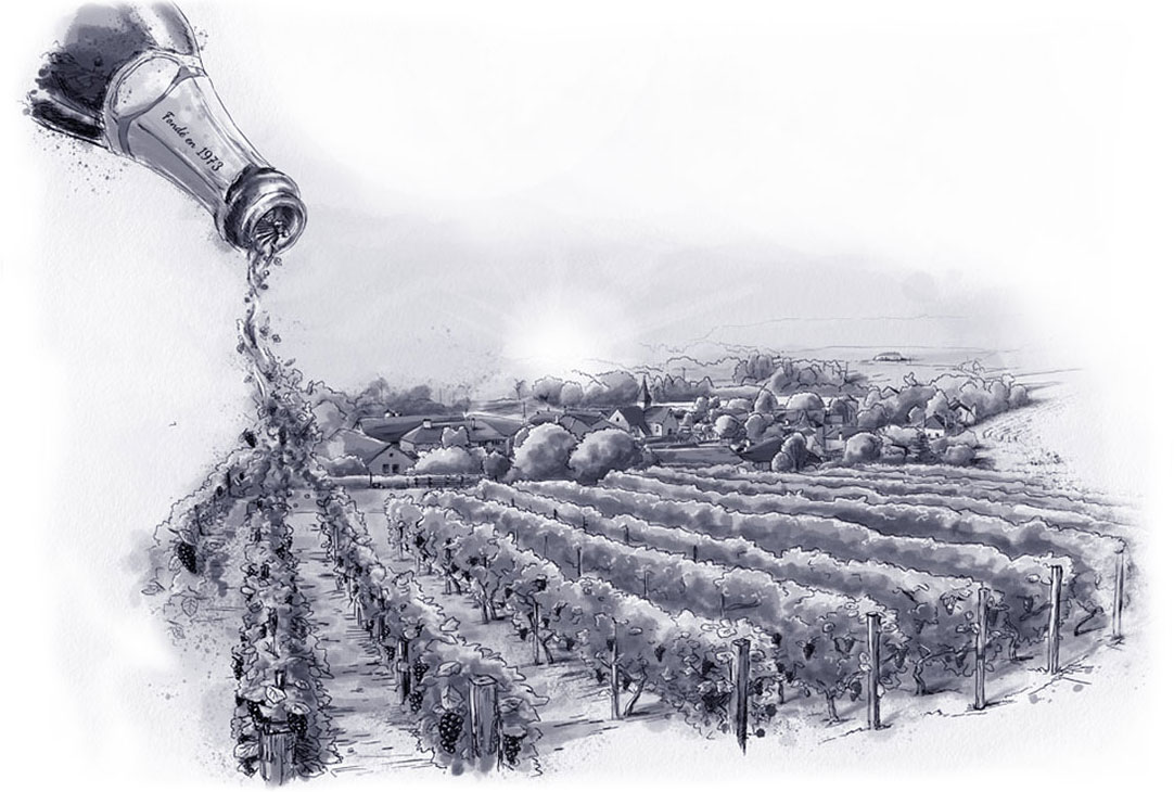 champagne-robin-illustration-acueil